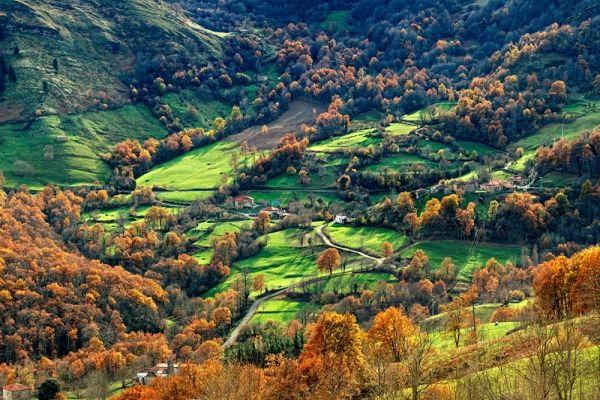 Naturaleza en el valle