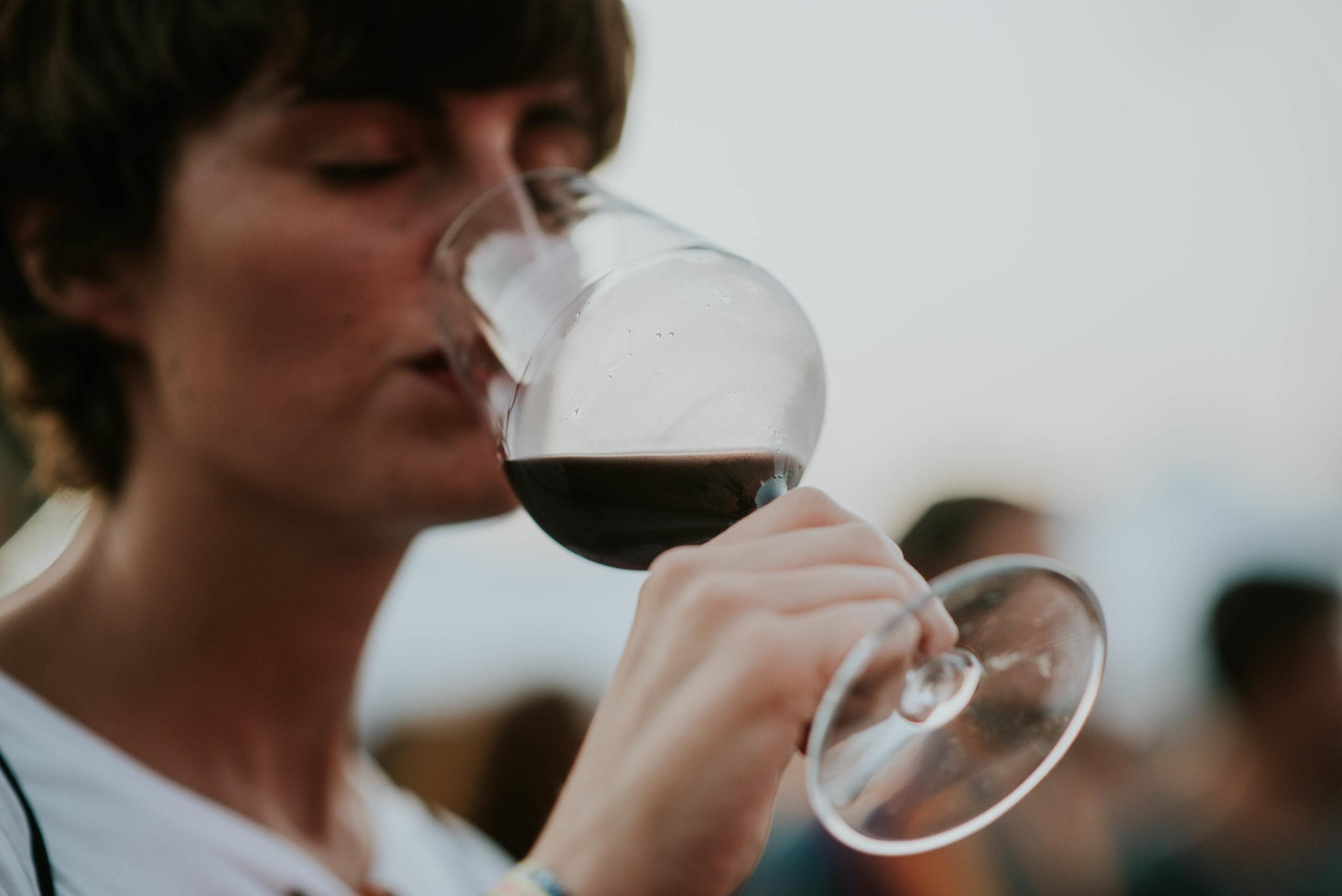 ¿Cuáles son los aromas primarios, secundarios y terciarios del vino?
