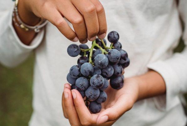 propiedades de las uvas