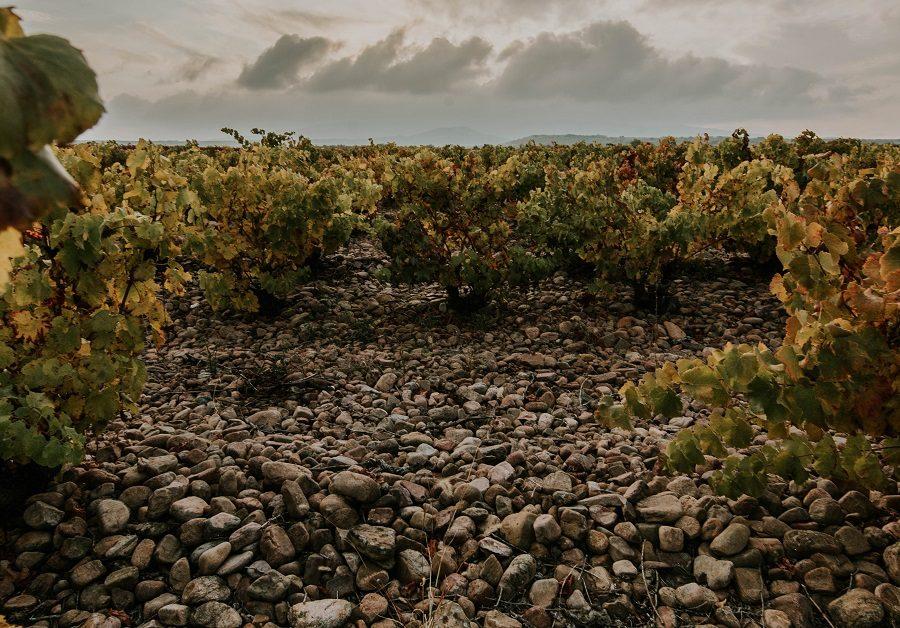 Rioja Oriental canto rodado